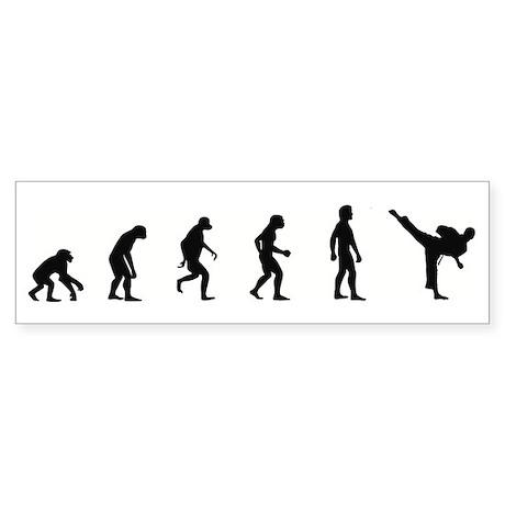 Evolution of Karate Bumper Sticker
