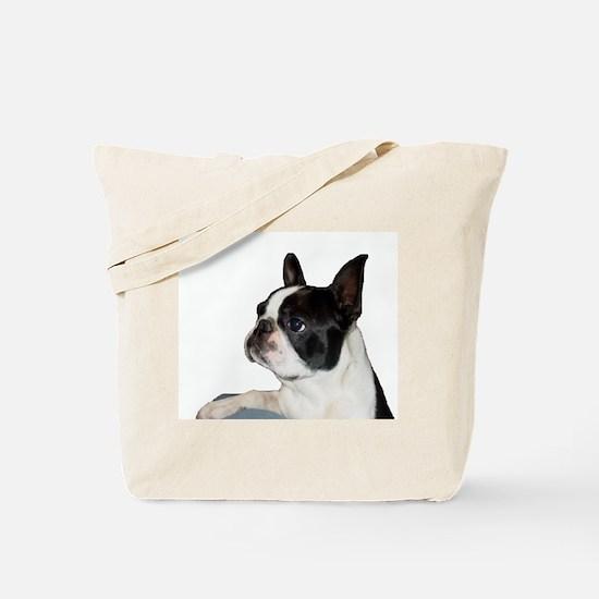 Boston Terrier - Pleading Eye Tote Bag