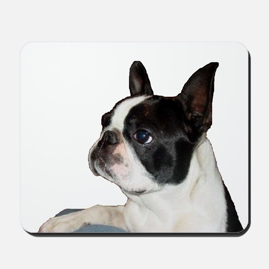 Boston Terrier - Pleading Eye Mousepad