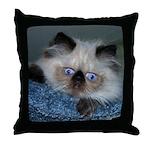 Blue-Eyed Himalayan Kitten Throw Pillow