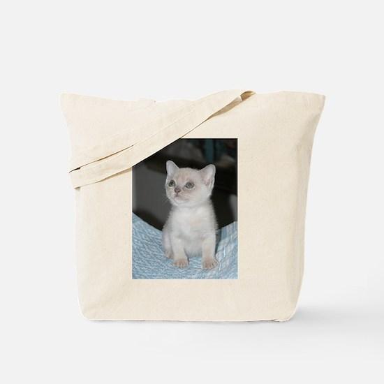 burmese platinum kitten Tote Bag