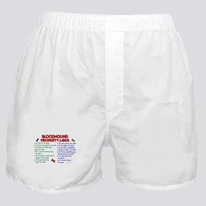 Bloodhound Property Laws 2 Boxer Shorts