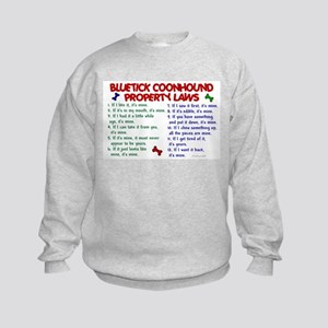 Bluetick Coonhound Property Laws 2 Kids Sweatshirt