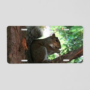 Squirrel Aluminum License Plate