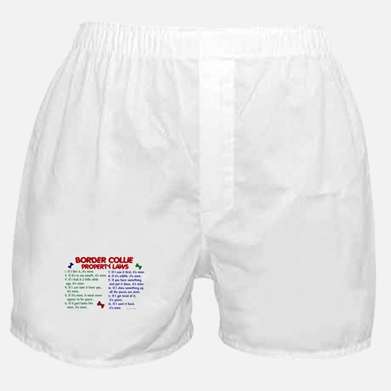 Border Collie Property Laws 2 Boxer Shorts