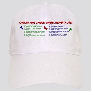 Cavalier King Charles Property Laws 2 Cap