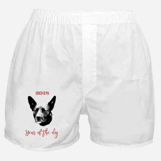 Funny Chinese new year tiger Boxer Shorts