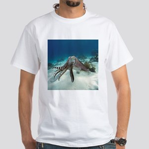 Broadclub cuttlefish - T-Shirt