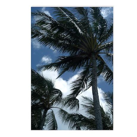 Hawaiian Palm Trees Postcards (Package of 8)