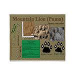 Mountain Lion Puma Tracks Throw Blanket