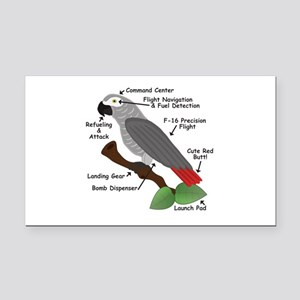 Anatomy of an African Grey Parrot Rectangle Car Ma
