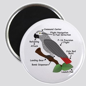 Anatomy of an African Grey Parrot Magnets