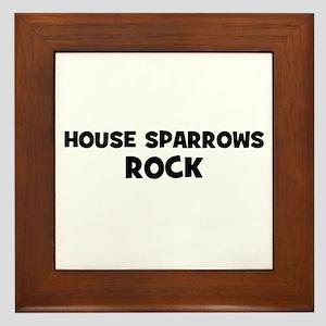 House Sparrows Rock Framed Tile