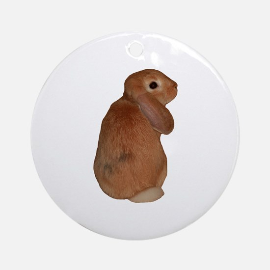 """Bunny 8"" Ornament (Round)"