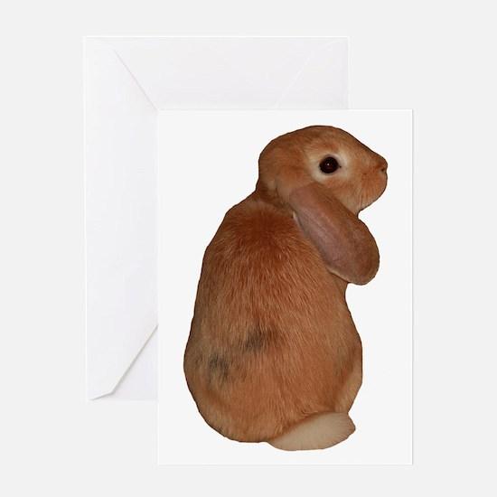 """Bunny 8"" Greeting Card"