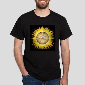 Aztec Sun Stone-Blk Sq Dark T-Shirt