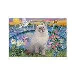 Lilies / Ragdoll Rectangle Magnet (10 pack)