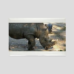 Rhino At Philadelphia Zoo Rectangle Magnet