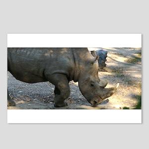 Rhino At Philadelphia Zoo Postcards (Package of 8)