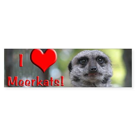 Helaine's Meerkat Bumper Sticker