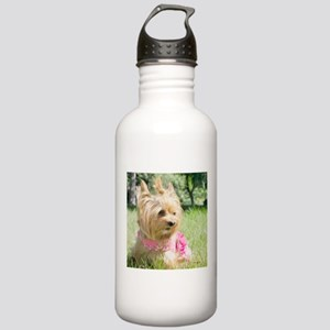 Puppy Tea Cup Yorkie Stainless Water Bottle 1.0L