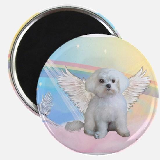 Maltese / Angel Magnets