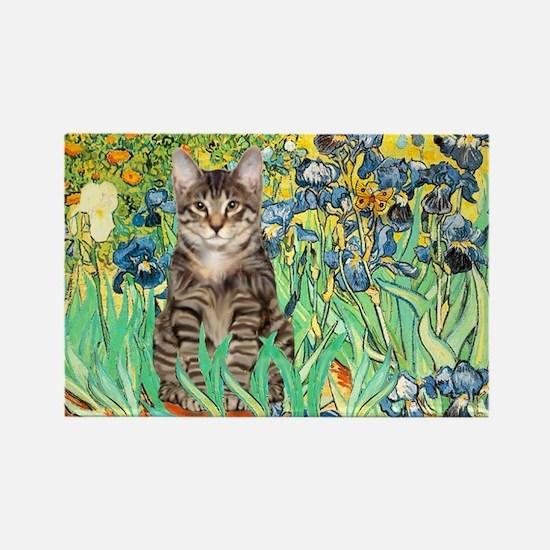 Irises / Tiger Cat Rectangle Magnet