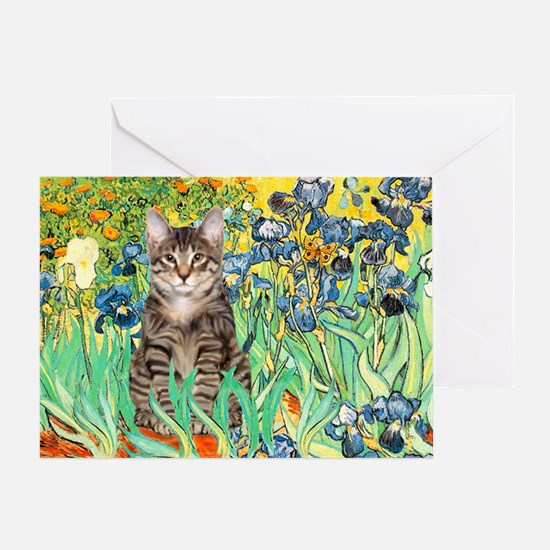 Irises / Tiger Cat Greeting Card