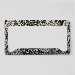 silver grey snake skin License Plate Holder