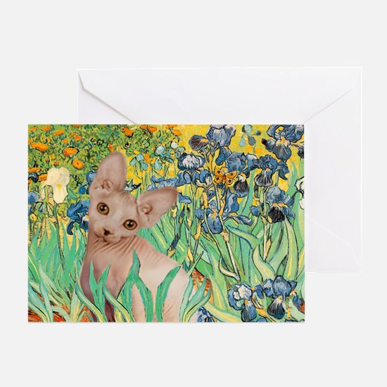 Irises / Sphynx Greeting Card