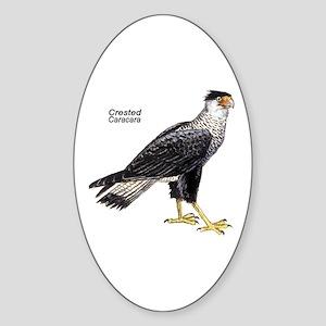 Crested Caracara Bird Oval Sticker