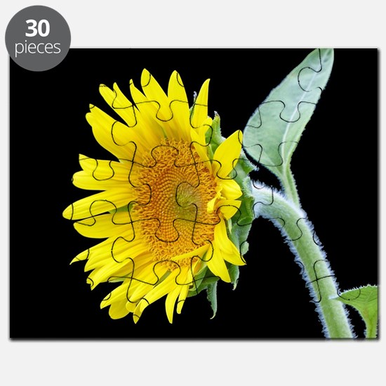 Small Sunflower Puzzle