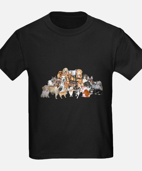 Other Dogs and Cats T