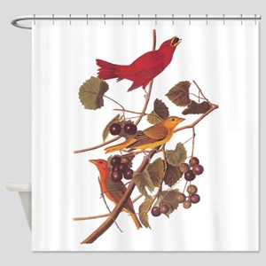 Summer Red Bird Vintage Audubon Shower Curtain