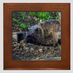 Cairn Terrier Hunting Framed Tile