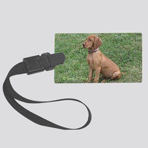 Vizsla Puppy - ZsaZsa Sitting Pr Large Luggage Tag