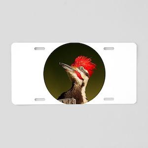 Pileated Woodpecker Aluminum License Plate