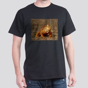 Galapagos iguana - land and marine T-Shirt