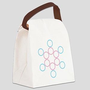 tranSacred circles Canvas Lunch Bag