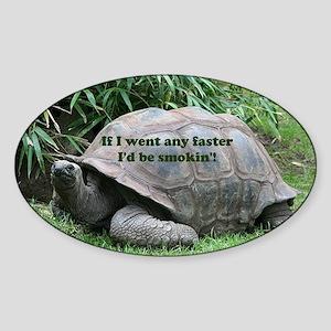 If I went any faster I'd be smokin'! Torto Sticker
