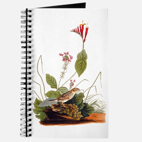 Henslow Bunting Vintage Audubon Bird Journal