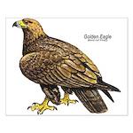Golden Eagle Bird Small Poster