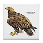 Golden Eagle Bird Tile Coaster