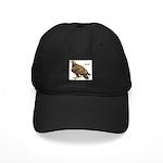 Golden Eagle Bird Black Cap