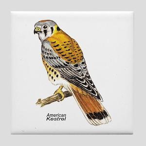 American Kestrel Bird Tile Coaster