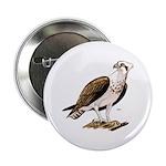 Osprey Bird of Prey Button