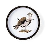 Osprey Bird of Prey Wall Clock