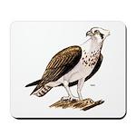 Osprey Bird of Prey Mousepad
