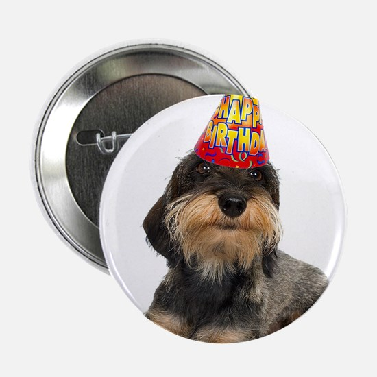"Wirehaired Dachshund Birthday 2.25"" Button"