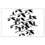 Little Auk Flock Posters